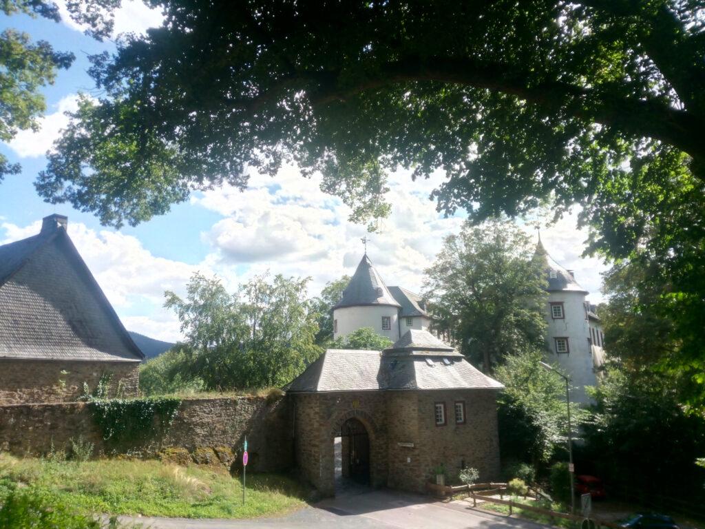 Blick auf die Burg Bilstein