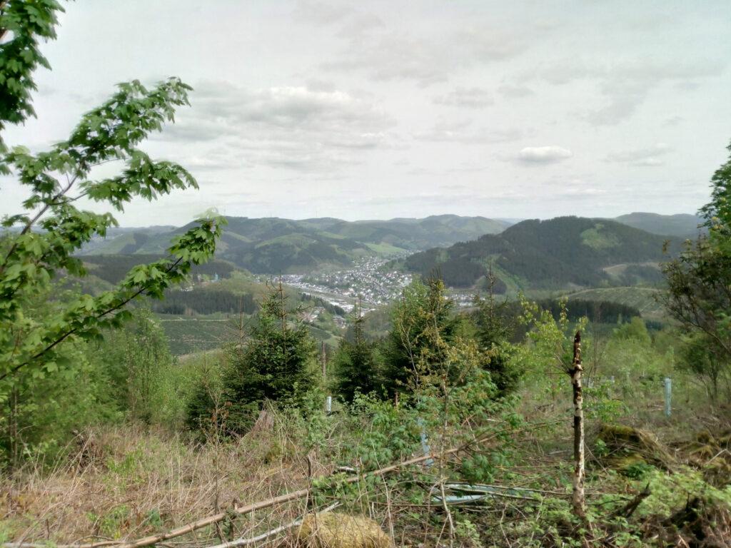 Shinrin-Yoku -  Blick auf Lennestadt-Altenhundem