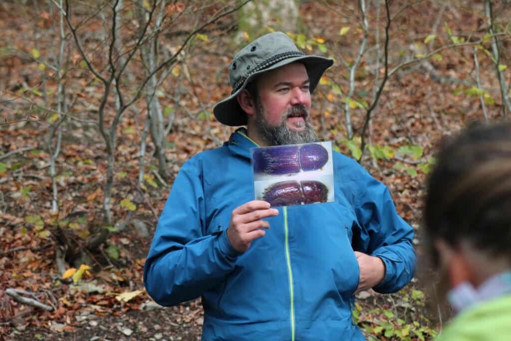 Ben Tüxen erklärt zum Thema Borkenkäfer