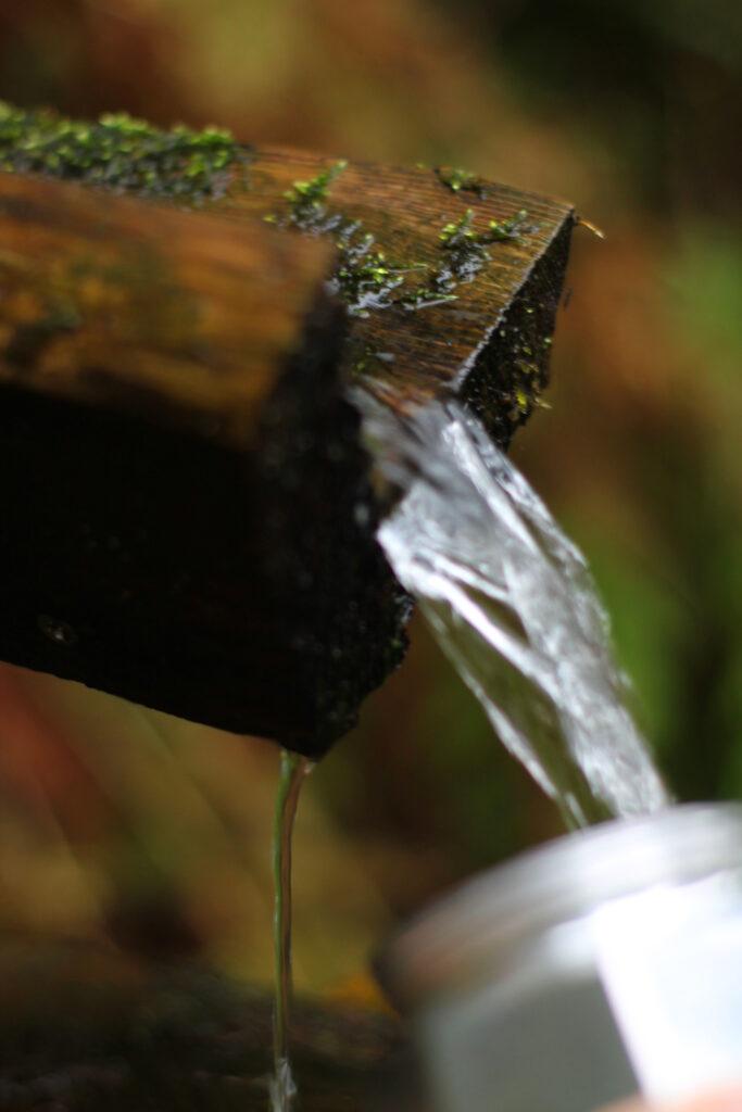 Hier wird die Bialetti mit frischem Quellwasser gefüllt. Perfekt zum Kaffee kochen auf Tour.