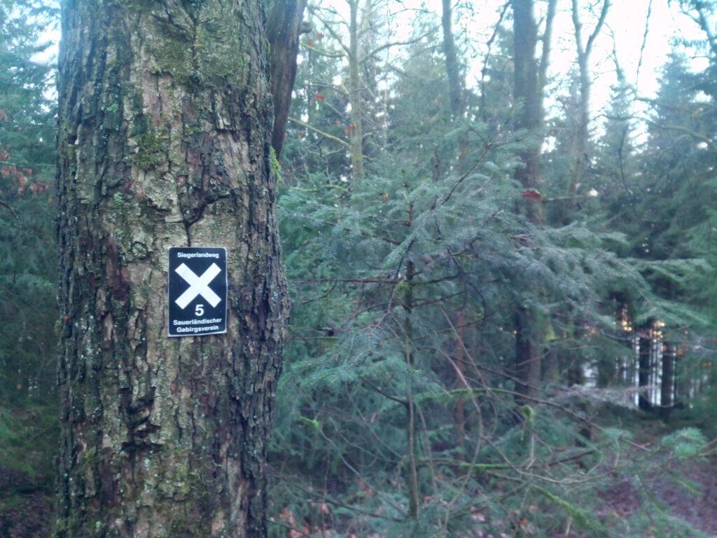 X5 in der Nähe von Welschen-Ennest