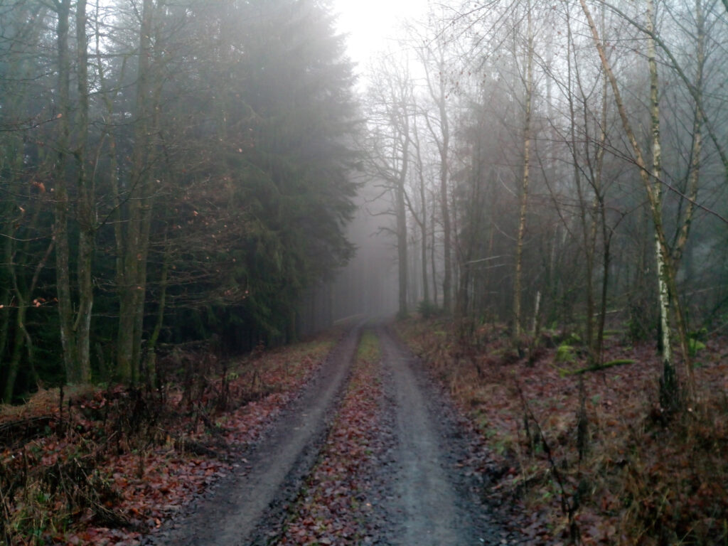 Forststraße