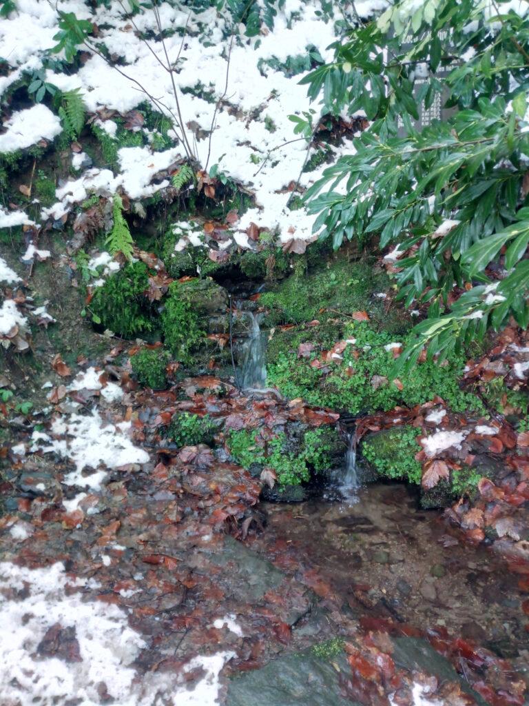 Heiligenbornquelle im Winter