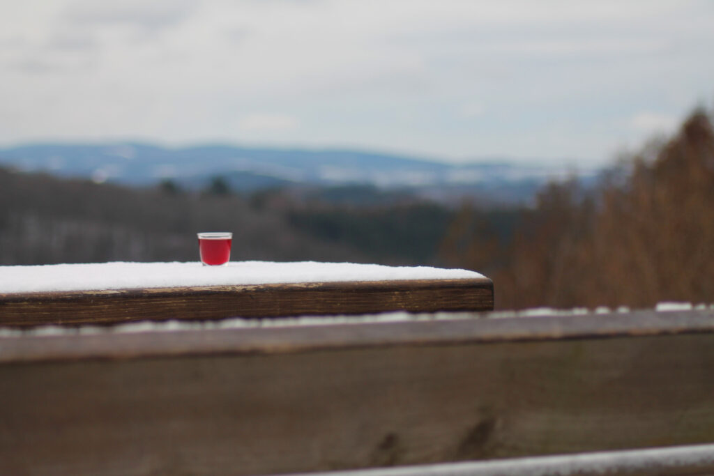Pinnchen mit selbstgemachtem Schlehenlikör. Draußen auf einem Tisch.