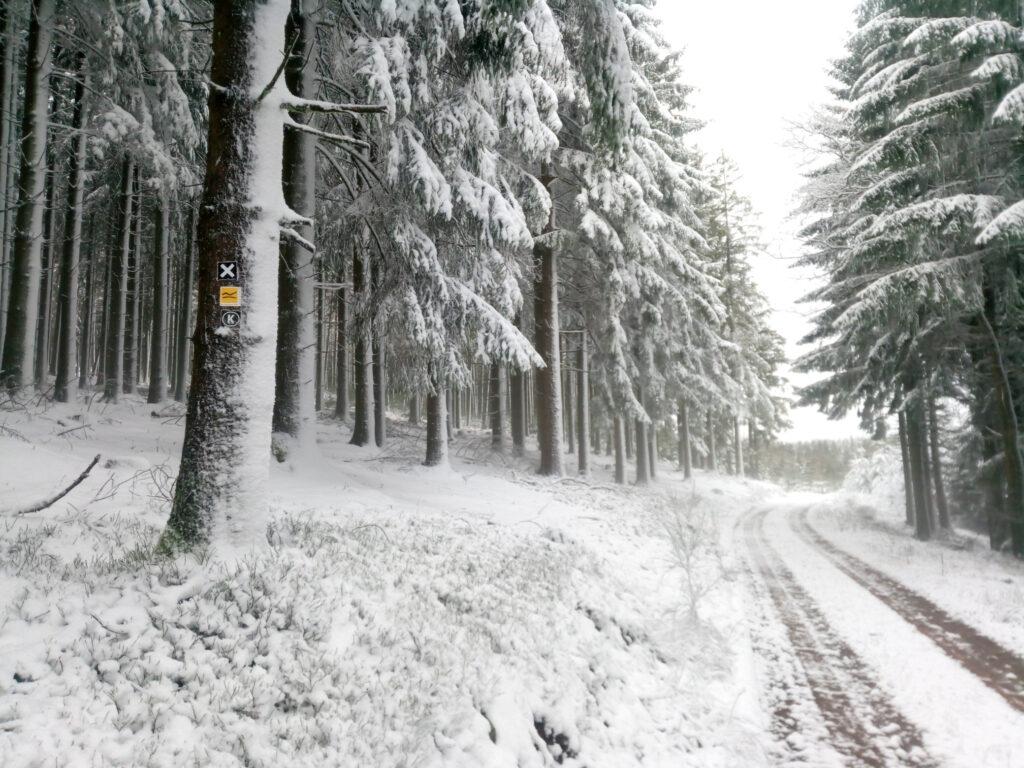 verschneiter Rothaarsteigzubringerweg im Winter