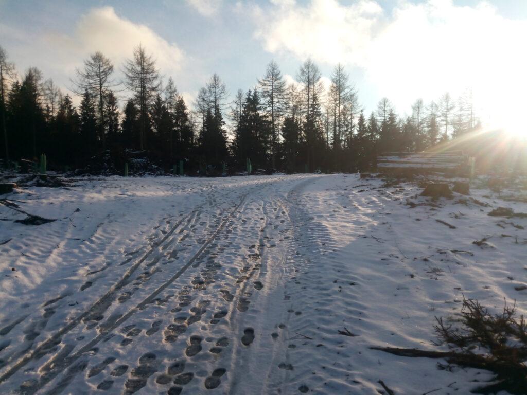 Fußspuren im Schnee auf einem Weg oberhalb des Altenbergs