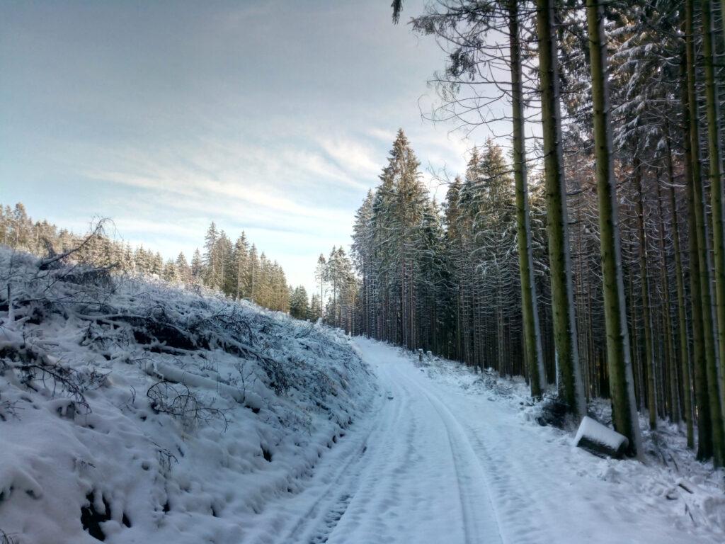 Weg in der Nähe des Potsdamer Platzes in Richtung Alpenhaus im Winter