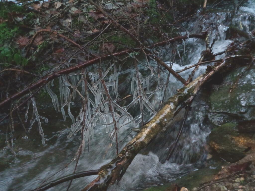 Vereiste Zweige in der Nähe von Lennestadt-Langenei
