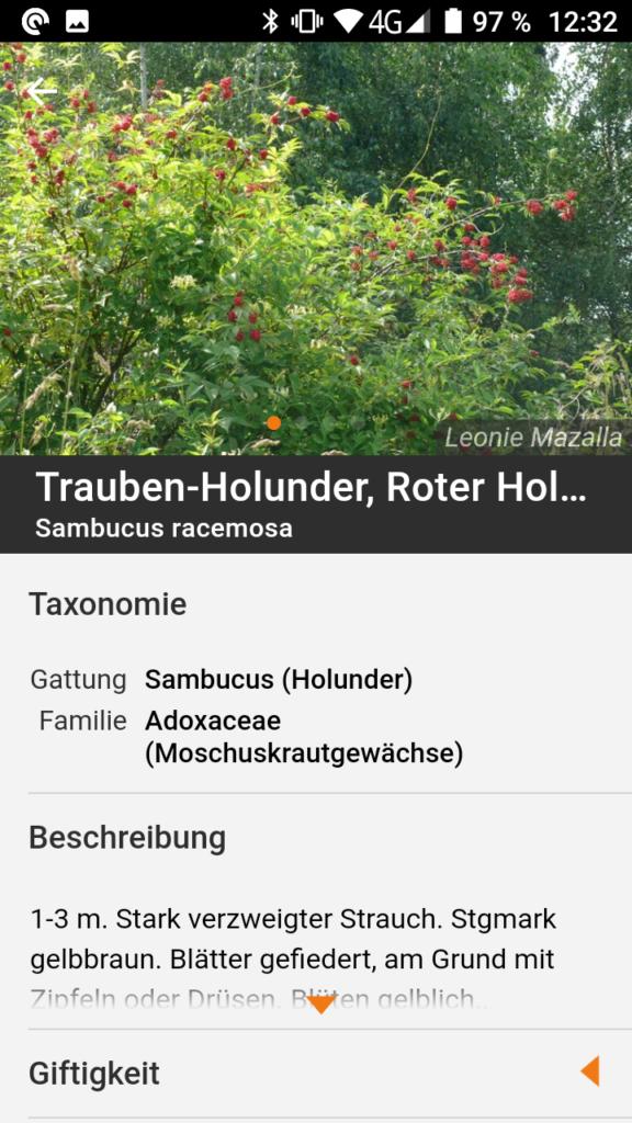 Screenshot aus App Flora Incognita