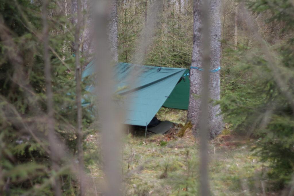 Fertiges Lager für eine Nacht im Wald bei 0 Grad Celsius. Hängematte und gespanntes Tarp als A-Frame.