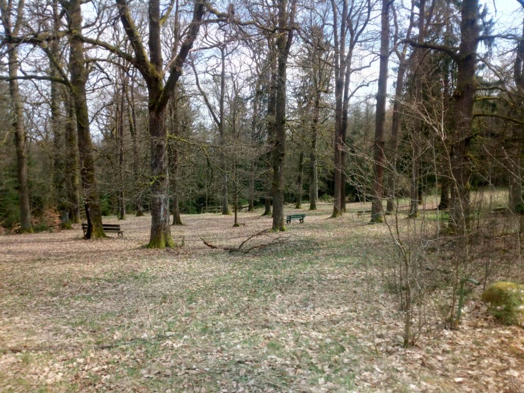 Platz zur Waldesstille