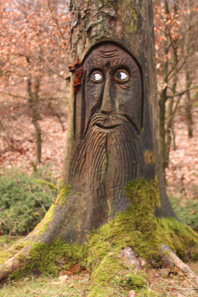 In einen Baumstumpf geschnitzter Waldschrat auf dem Veischeder Sonnenpfad in der Nähe der Hohen Bracht in Lennestadt-Altenhundem