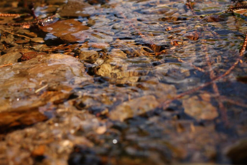 flaches fließendes Gewässer