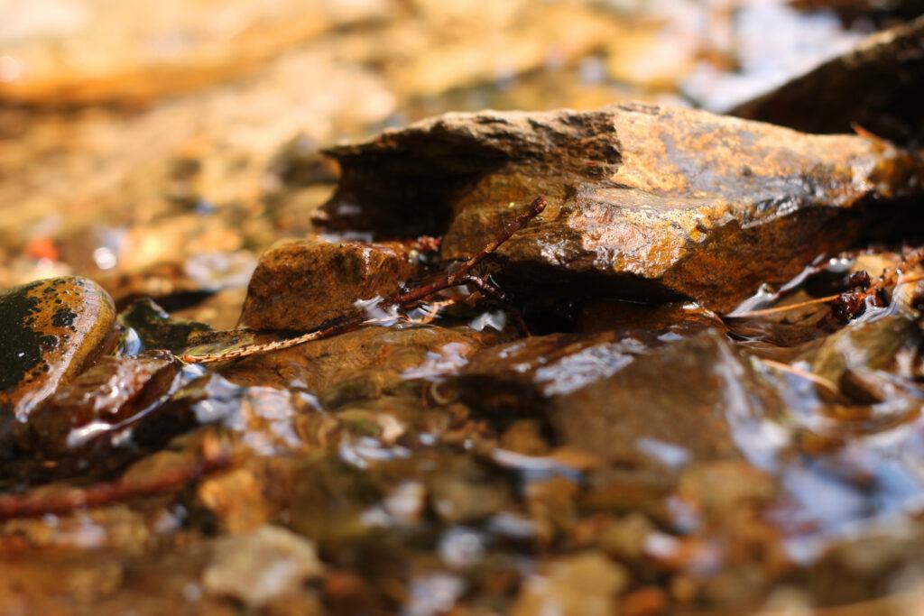 Größere Steine im flachen Gewässer