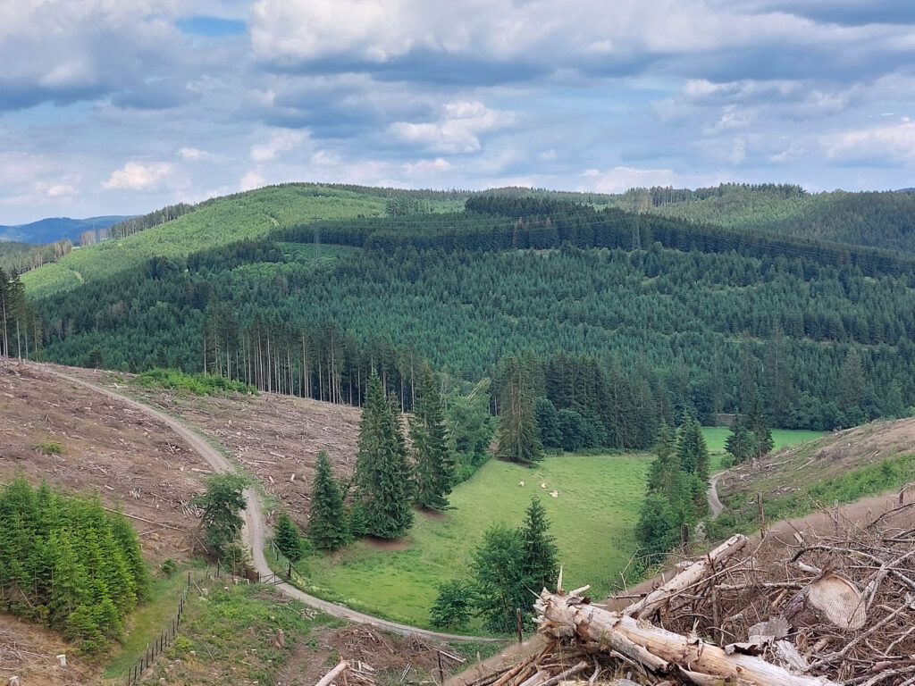 Blick vom Wittgensteiner Panoramaweg