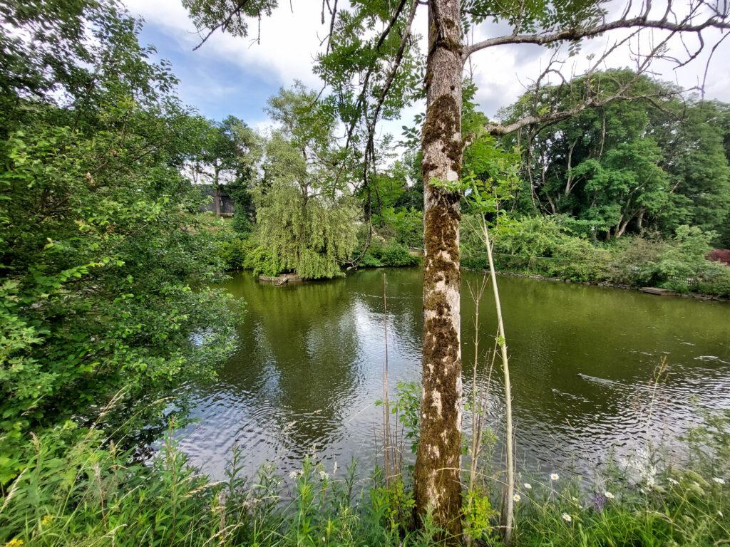 Teich am Schloss Berleburg. Sitz der Wittgenstein-Berleburg'schen Rentkammer.