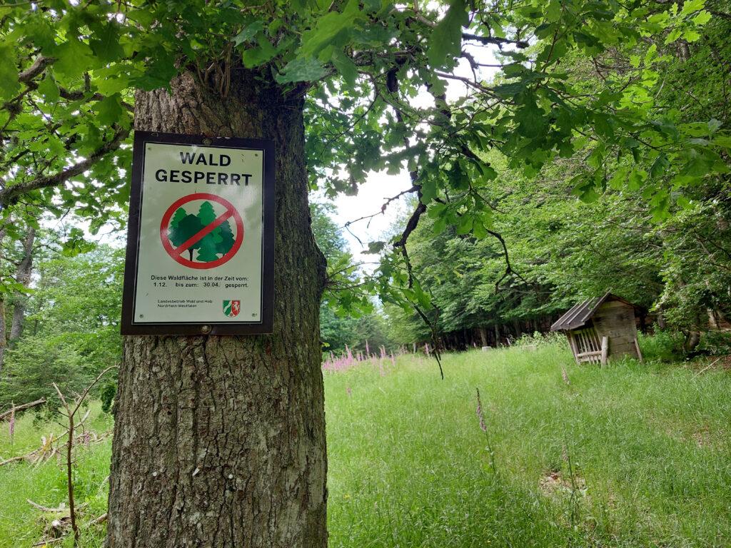 Offizielle Waldsperrung durch den Landesbetrieb Wald und Holz NRW.