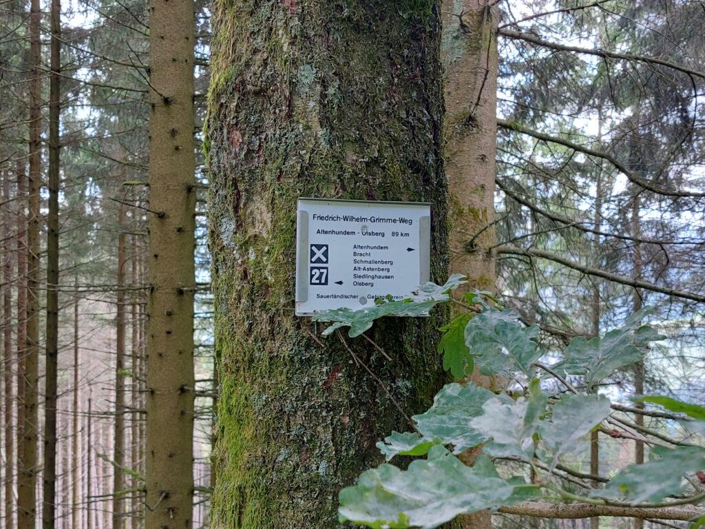 X27 Friedrich-Wilhelm-Grimme-Weg Schild auf dem Weg an einer Fichte.