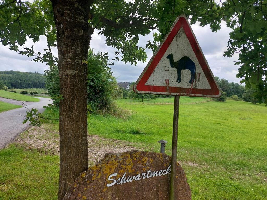Schild Achtung Kamele