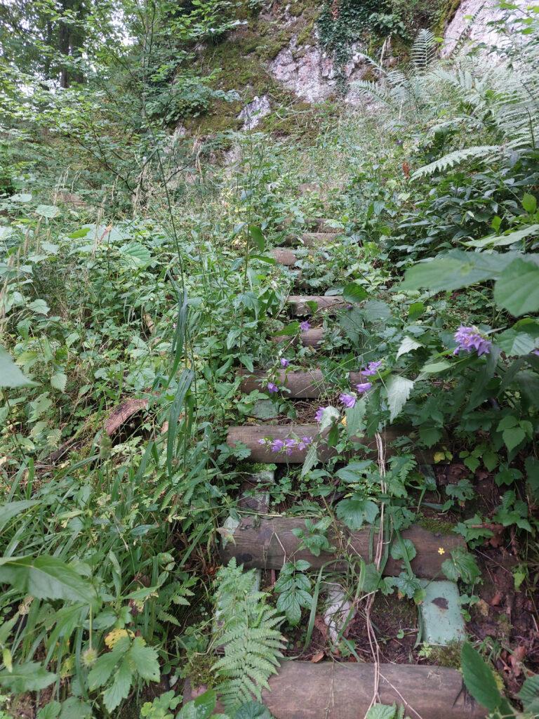 Treppen zur Deutmecker Höhle